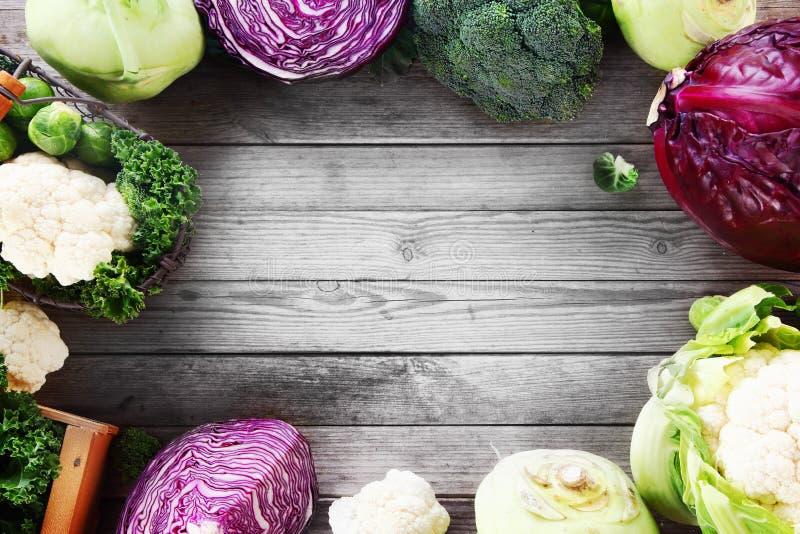 各种各样的芸苔圆白菜家庭品种框架  免版税库存图片