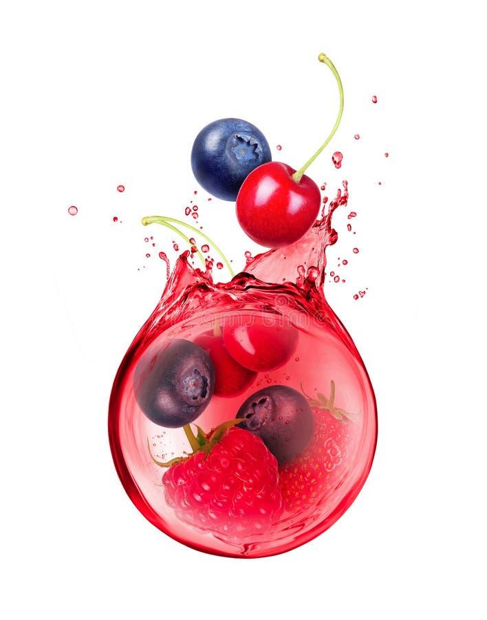 各种各样的莓果在汁液浪花被淹没  免版税库存照片