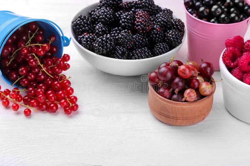 各种各样的莓果特写镜头包括蓝莓、莓、黑莓无核小葡萄干和鹅莓在一白色木backgr 免版税库存照片