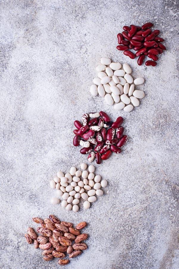 各种各样的豆的分类在轻的背景的 库存照片