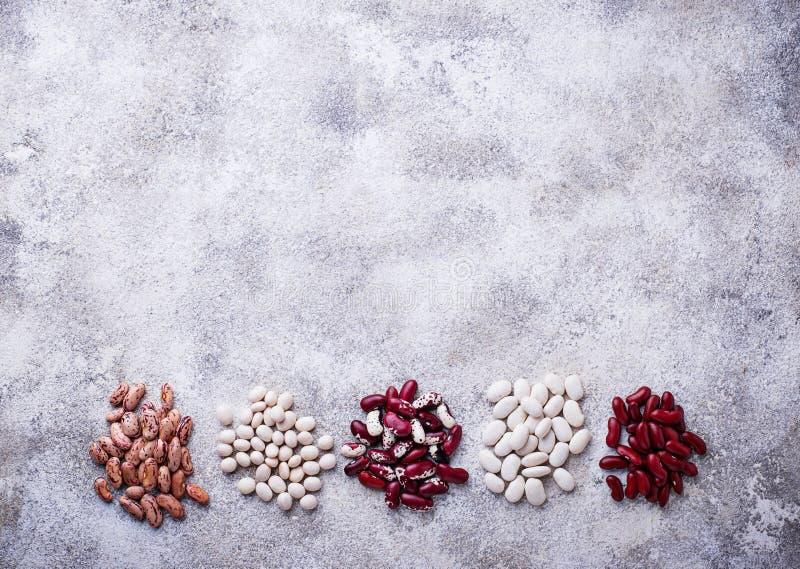 各种各样的豆的分类在轻的背景的 免版税库存照片