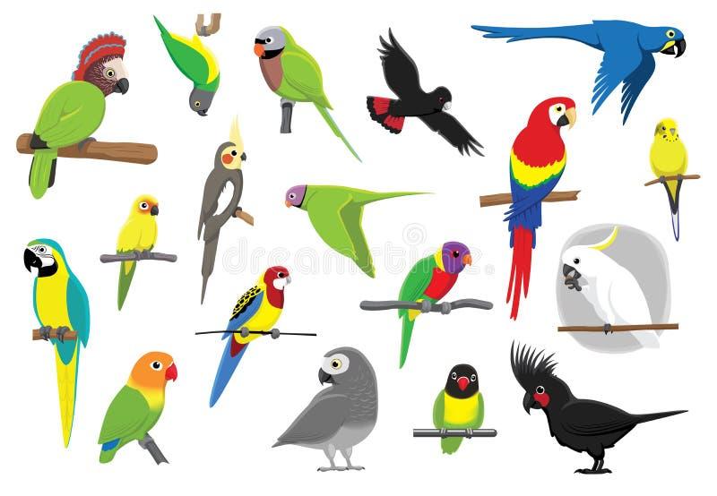 各种各样的鹦鹉动画片传染媒介例证 库存例证