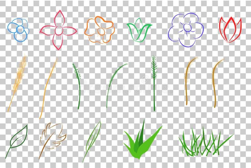 各种各样颜色开花叶子和草,在透明作用背景 库存例证