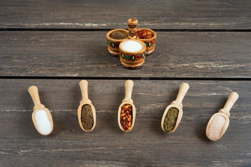 各种各样香料和在木匙子 香料成份辣椒、盐,喜马拉雅盐,美味和黑胡椒平的位置  免版税库存照片