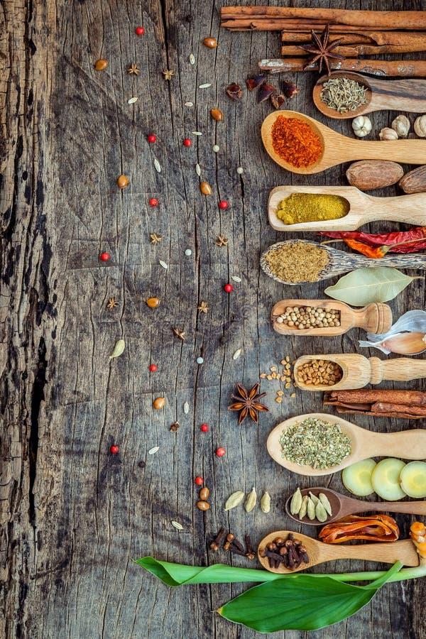 各种各样香料和草本在木匙子 香料平的位置  图库摄影
