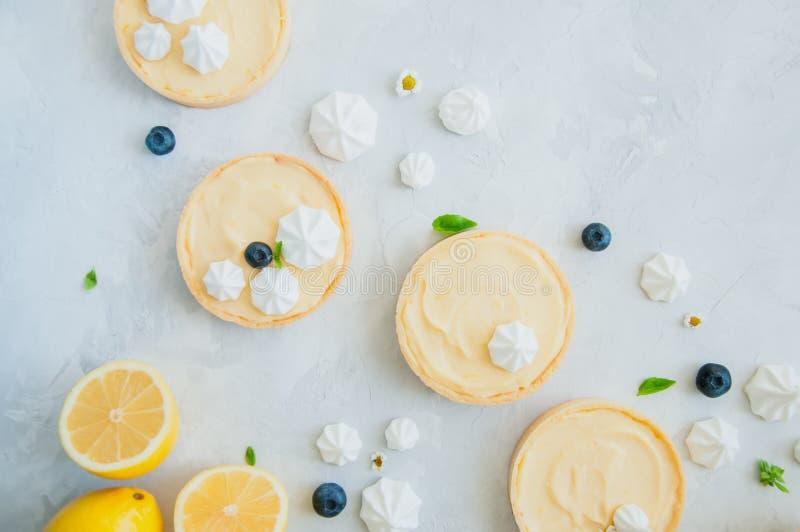 各自的柠檬酱馅饼用蓝莓阻塞蛋白甜饼和basi 图库摄影