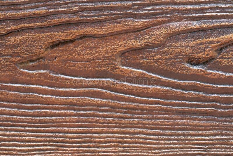 综合性木头纹理  库存照片