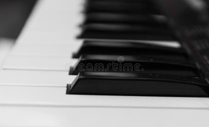 合成器钢琴键盘侧视图 有黑白钥匙的专业电子密地键盘 库存照片