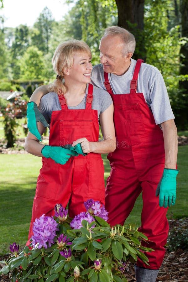 结合拥抱,当工作在庭院里时 免版税库存照片