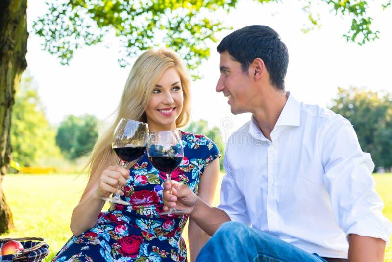 结合饮用在草甸的野餐机智红葡萄酒 图库摄影