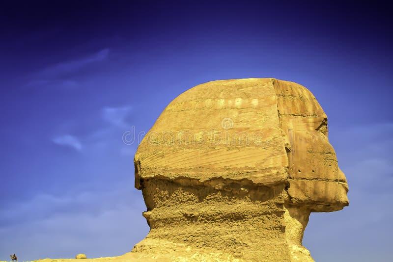 吉萨棉极大的狮身人面象 库存照片