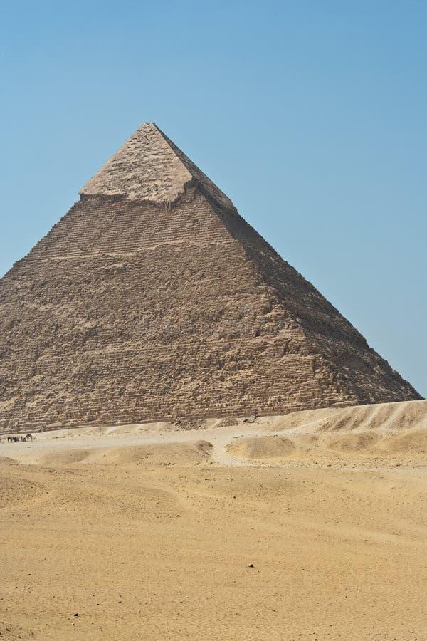 吉萨棉,埃及金字塔 库存照片