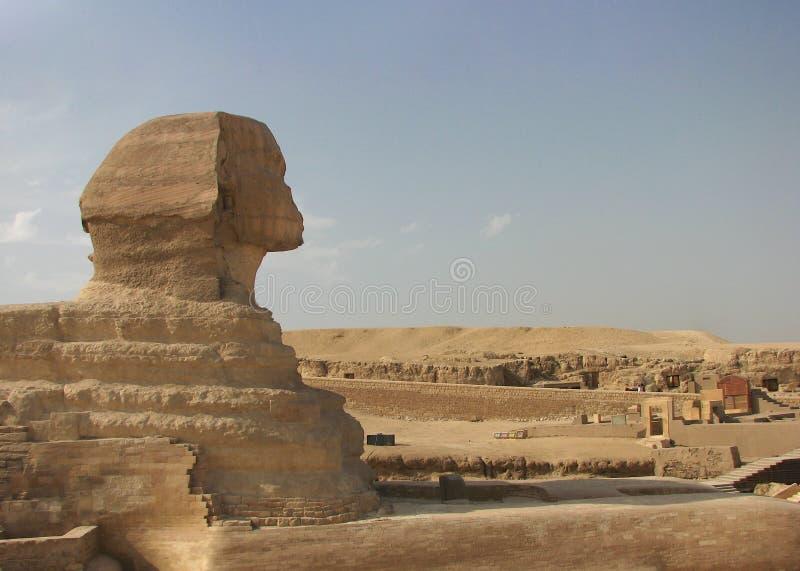 吉萨棉,开罗,埃及伟大的狮身人面象  图库摄影