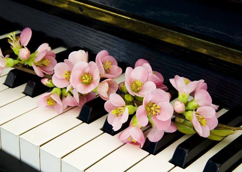 吊唁卡片-在钢琴的花 免版税库存照片