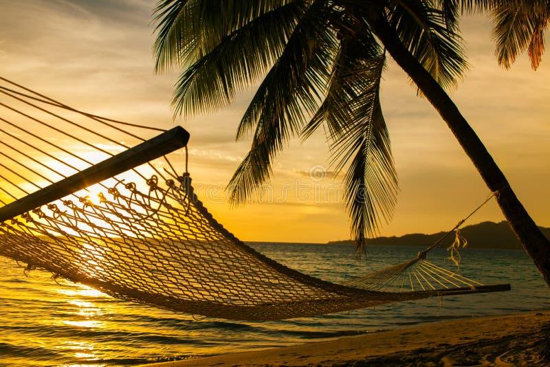 吊床与棕榈树的剪影在海滩在日落 免版税图库摄影