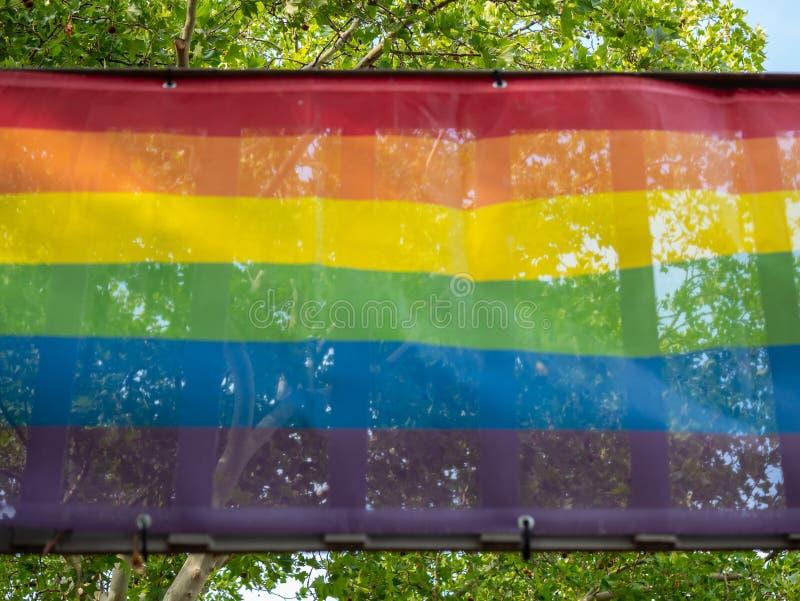 同性恋自豪日反对树的彩虹旗子 免版税库存照片