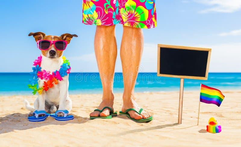 同性恋自豪日狗和所有者在度假夏天休假 库存照片