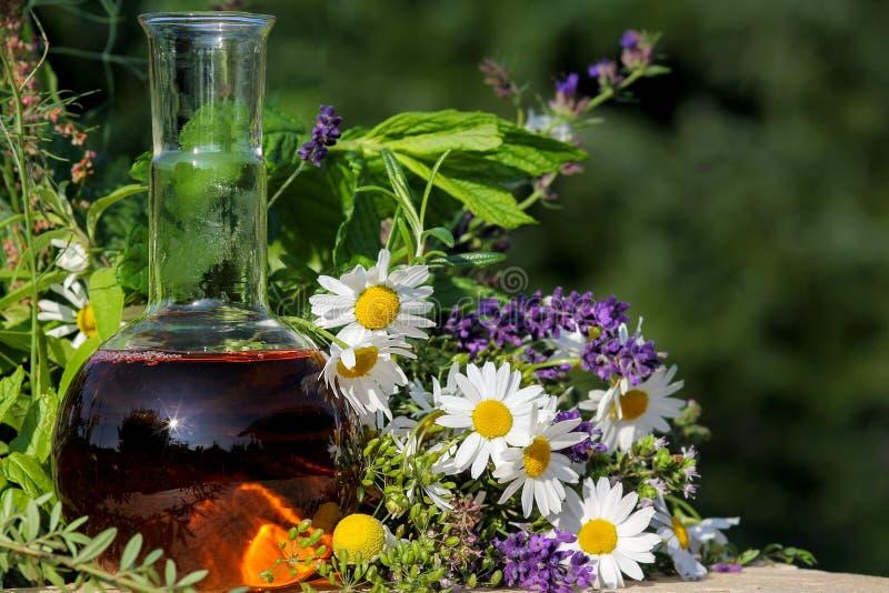 同种疗法和烹调与医疗植物 库存图片