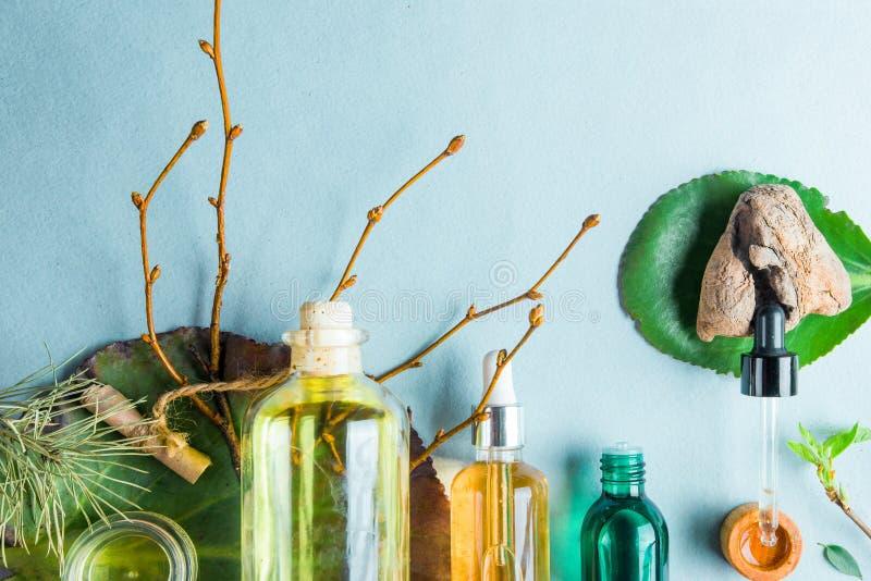 同种疗法油,小肠健康自然化妆用品的,护肤的油膳食补充剂在轻的背景 免版税图库摄影