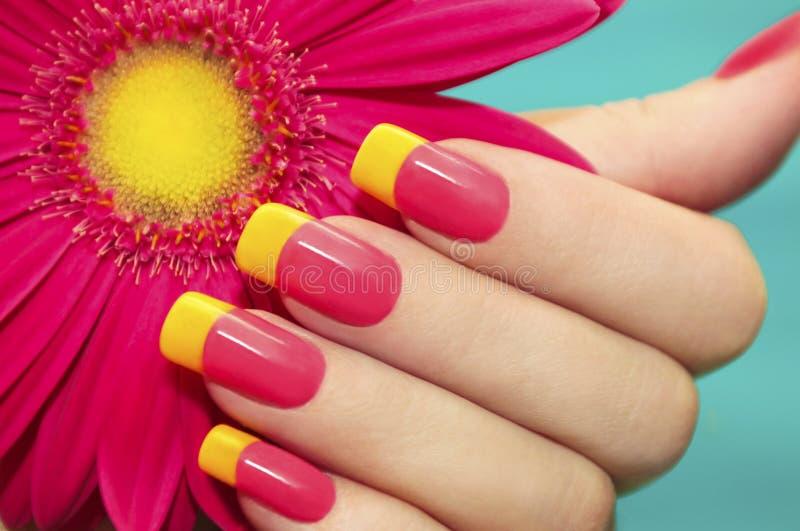 同色而浓淡不同的修指甲。 免版税库存图片
