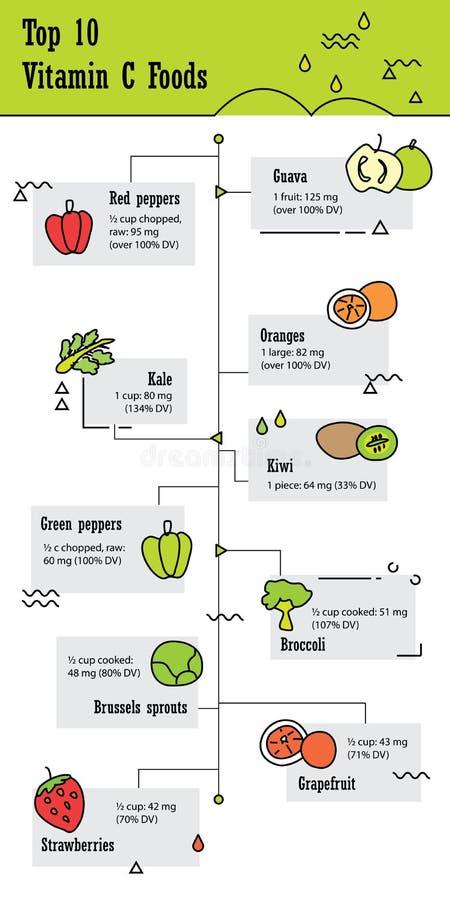 名列前茅10 infographic维生素C的食物 免版税图库摄影