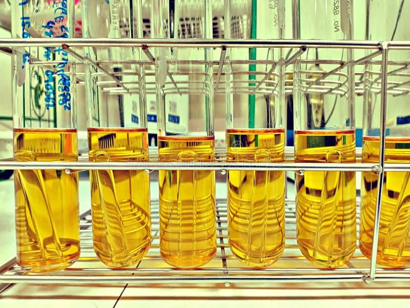 名单汤试管大肠菌测试的在食物工厂实验室 免版税库存图片