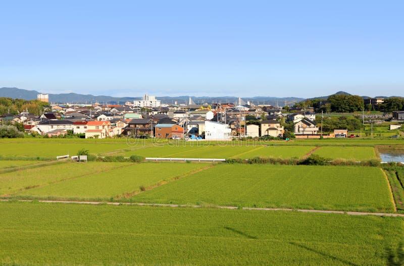 名古屋市郊区和米领域 免版税库存图片