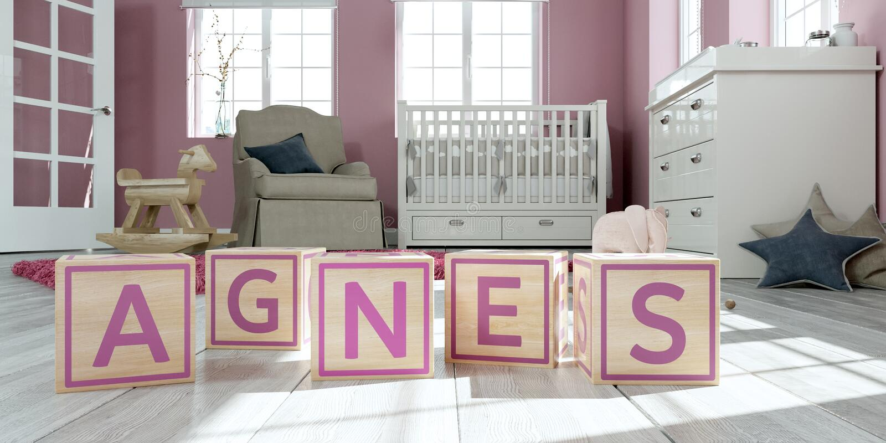 名字艾格尼丝写与木玩具立方体对于儿童` s室 皇族释放例证