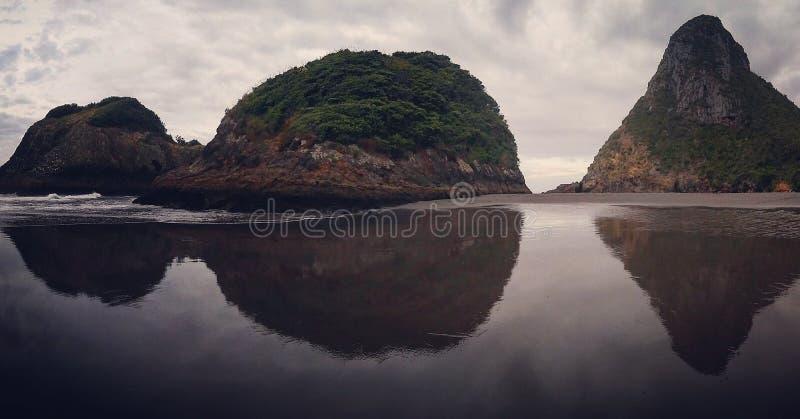 后面海滩新普利茅斯塔拉纳基新西兰 免版税库存图片