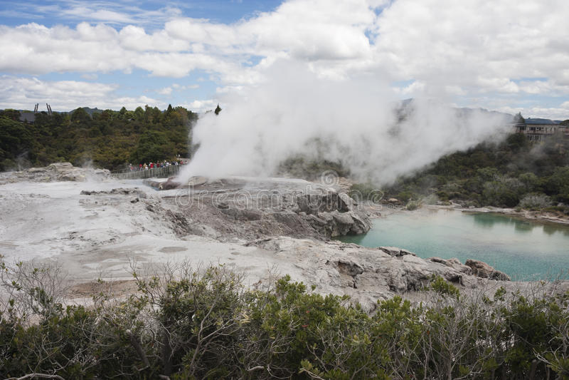 从后面看见的Pohutu喷泉 库存照片