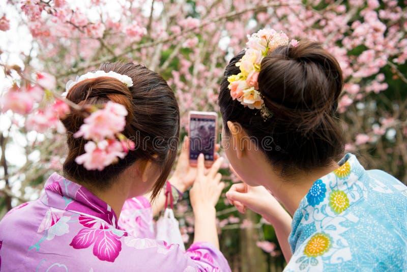 后面观点的亚裔中国女性游人 免版税图库摄影
