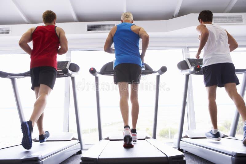 后面观点的使用连续机器的小组人在健身房 库存图片