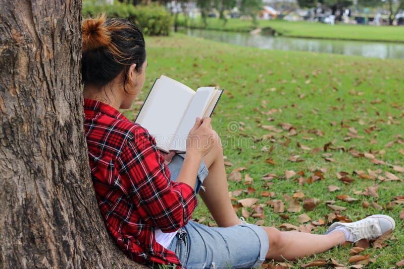 后面观点的倾斜反对树和读课本的红色衬衣的年轻轻松的人在美丽的室外公园 库存照片