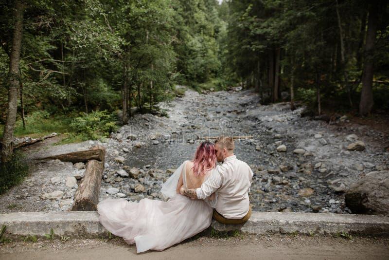 后面观点的美丽的年轻新娘和新郎坐在山河上的桥梁 库存图片