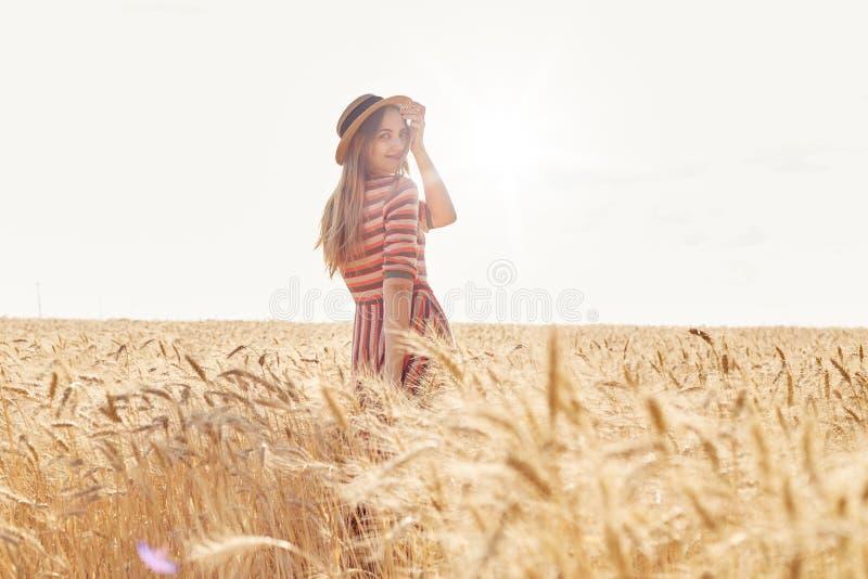 后面观点的srylish镶边礼服的美丽的年轻女人,在麦田,摆在小尖峰中,turnes照相机和 免版税库存图片