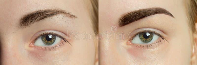 以后以前完善的眼眉 库存照片