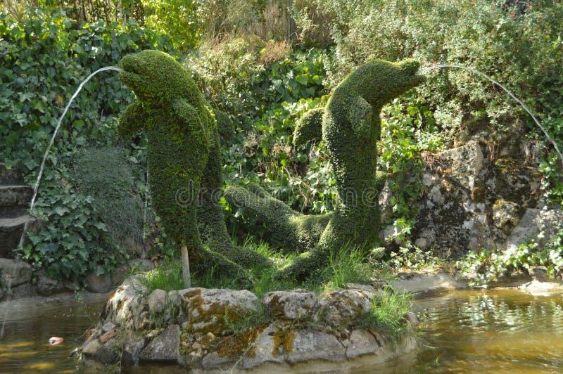 吐水的站立的海豚通过他们的在蕨雕塑的被再创的嘴 库存照片