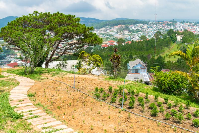 向俯视村庄的云杉的一条道路在大叻越南 免版税库存照片