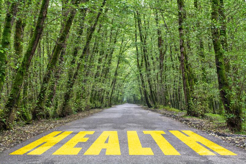 向健康的密林路 库存照片