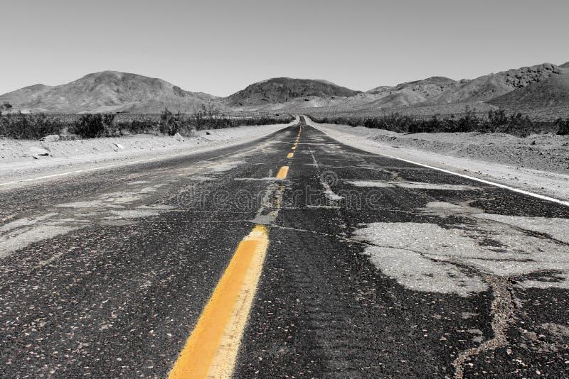 向孤立杉木在阿拉巴马小山,内华达山,加利福尼亚,美国的路 库存图片