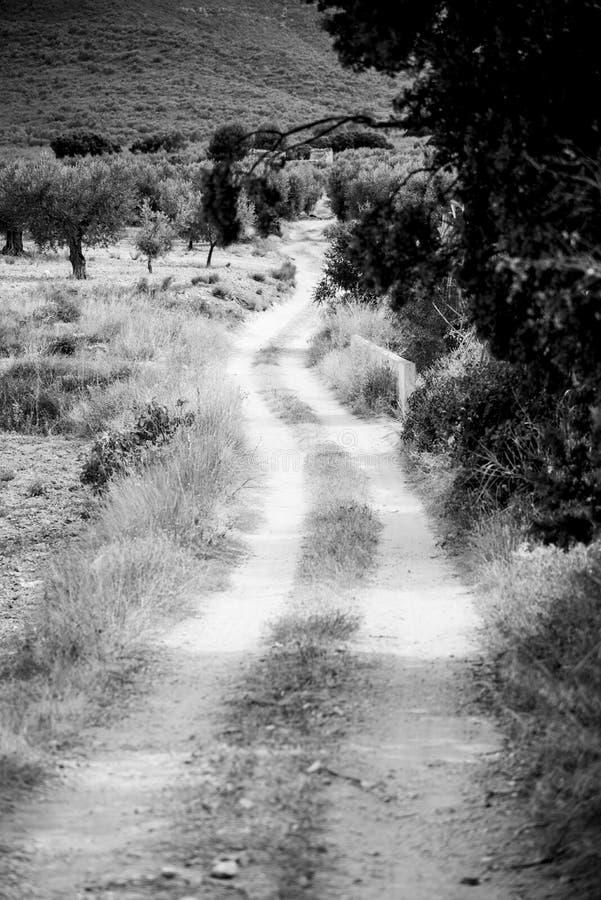 向山的路在一个典型的西班牙村庄 库存照片