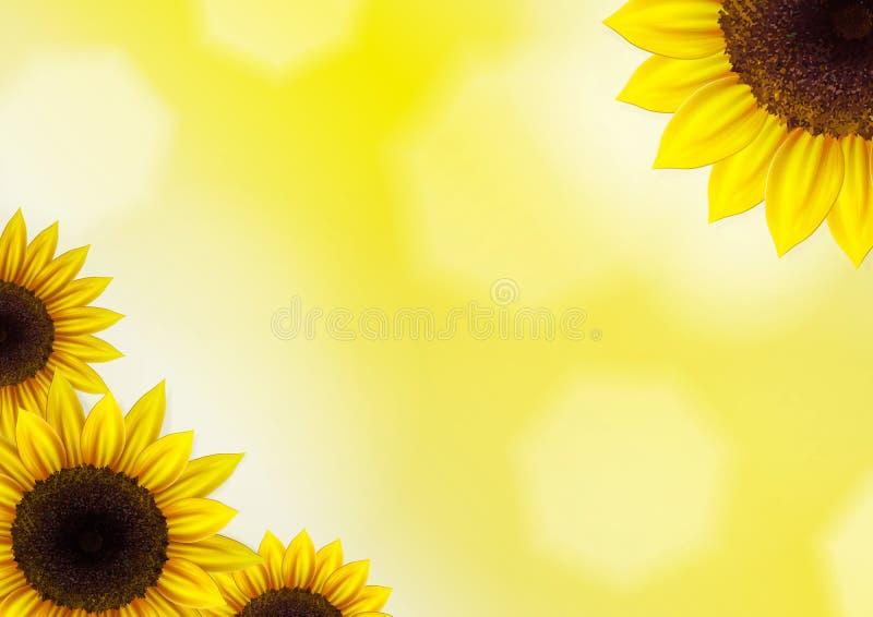 向日葵传染媒介背景 向量例证