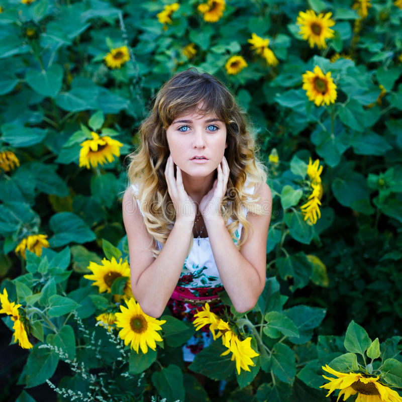 向日葵的领域的可爱的女孩 库存照片