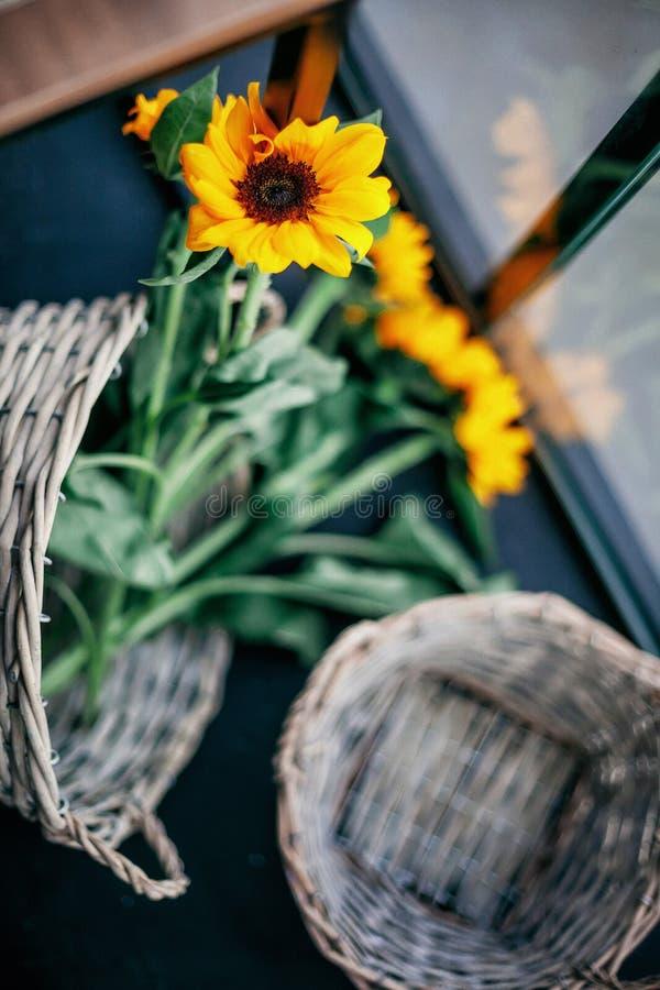 向日葵篮子在显示的 免版税库存照片