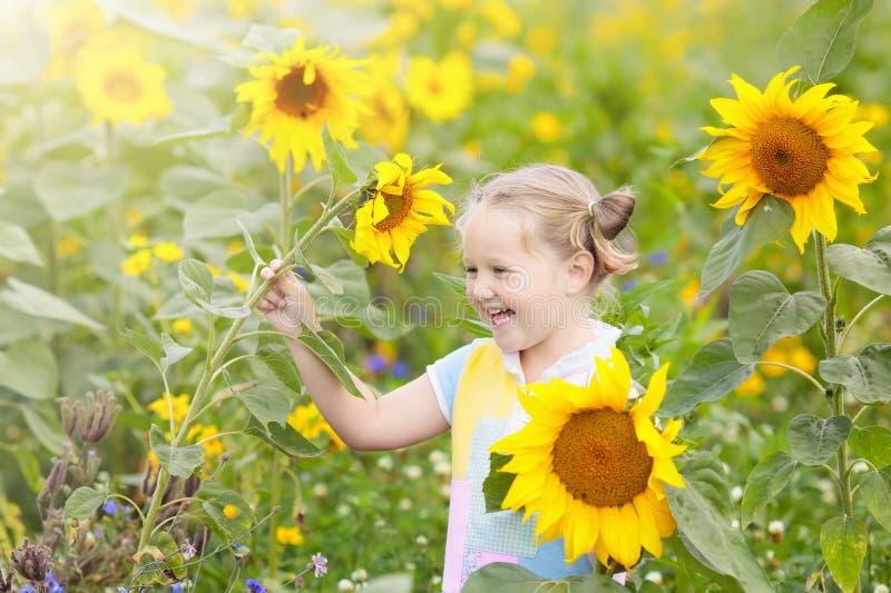 向日葵领域的孩子 孩子用向日葵 免版税库存图片