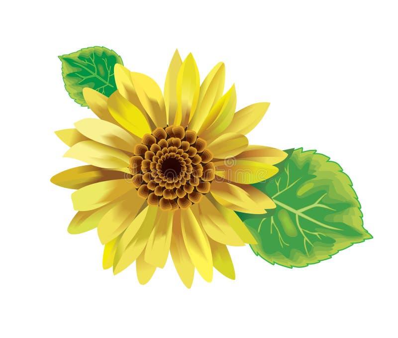 向日葵黄色 皇族释放例证