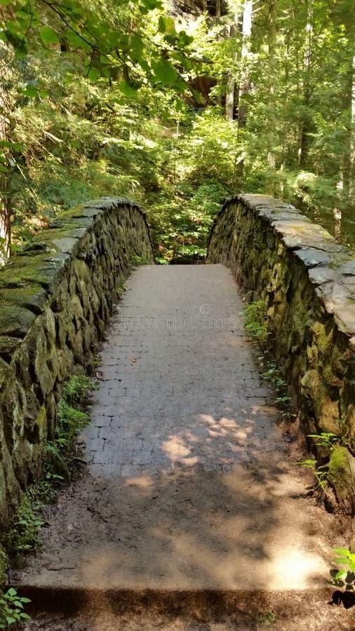 向桥梁扔石头 免版税图库摄影