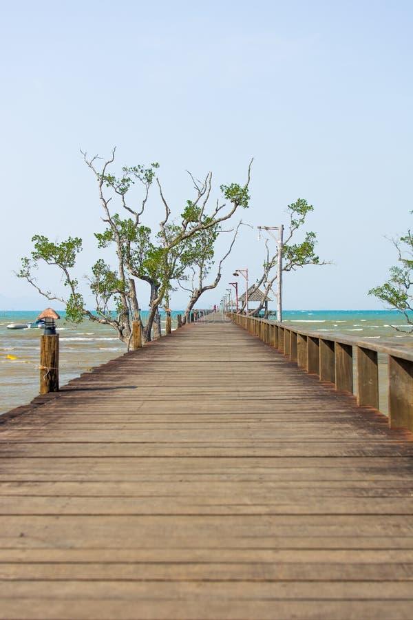 向海的木桥 免版税库存照片