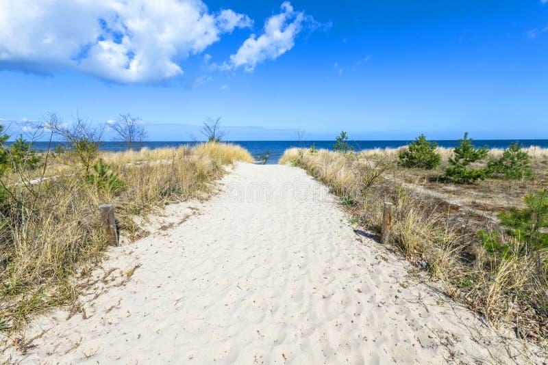 向海滩的道路在波罗的海 免版税库存图片