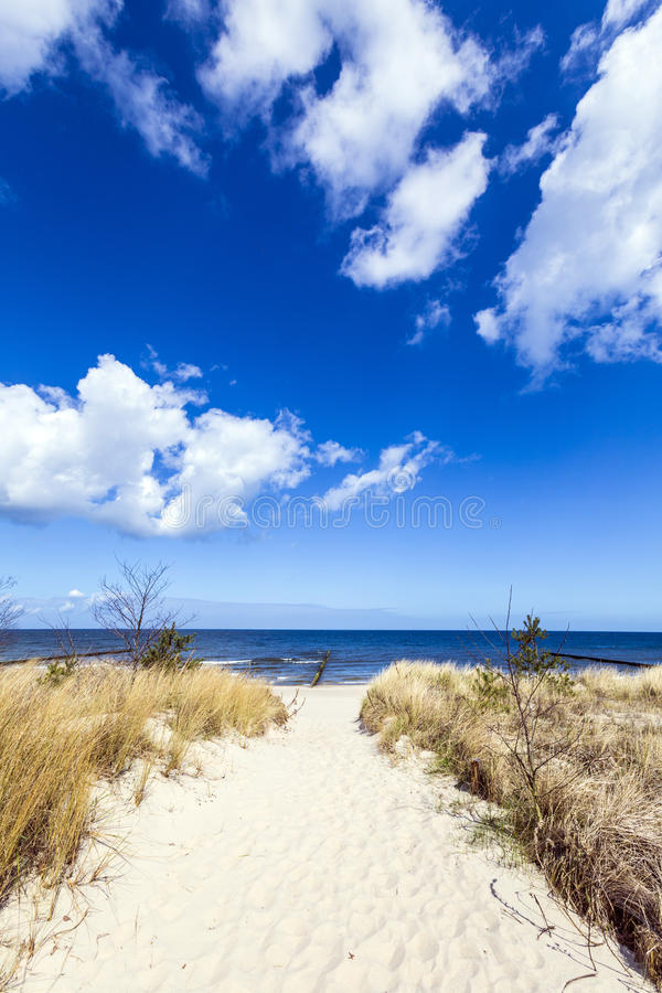 向海滩的道路在波罗的海 免版税库存照片